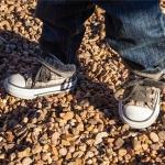 Tênis para Crianças: 5 Bons Modelos de Calçados da Linha Infantil